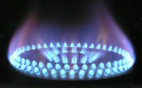 Спрогнозировано крупнейшее в истории падение спроса на газ