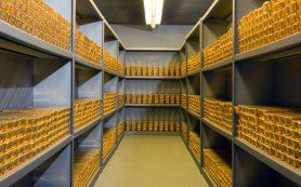 «Покупать золото нужно регулярно»: экономист дал совет
