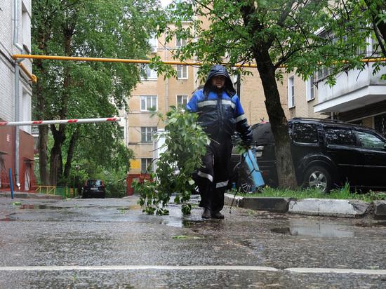 На улицы Москвы вышло более 300 аварийных бригад
