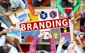 Создание качественного брендинга компанией Mind-Expert