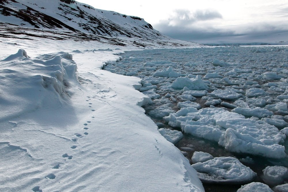Госдеп уведомил компании Европы о риске санкций из-за «Северного потока – 2»
