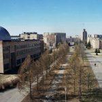 Эксперты сделали прогноз на результаты встречи ОПЕК+ 3 и 4 марта