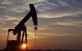 «Роснефть» остается флагманом энергетического рынка