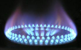 «Газпром» заверил в бесплатном проведении газа к небольшим частным домам