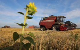 Россия сможет к 2030 году экспортировать продовольствие на 47 млрд долларов