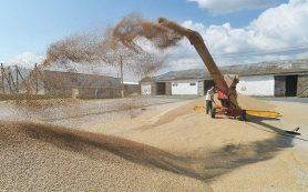 Россия возобновит реализацию зерна из запасов интервенционного госфонда