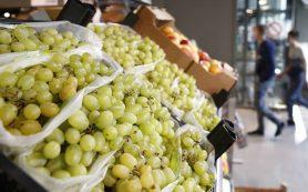 В Роскачестве прогнозируют рост цен на виноград не менее чем на 30% в текущем сезоне